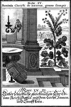 Biblia ectypa : Bildnussen auss Heiliger Schrifft Alt und Neuen Testaments - 1695 - Johann Christoph Weigel
